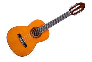 Home Beginner Guitar Shop